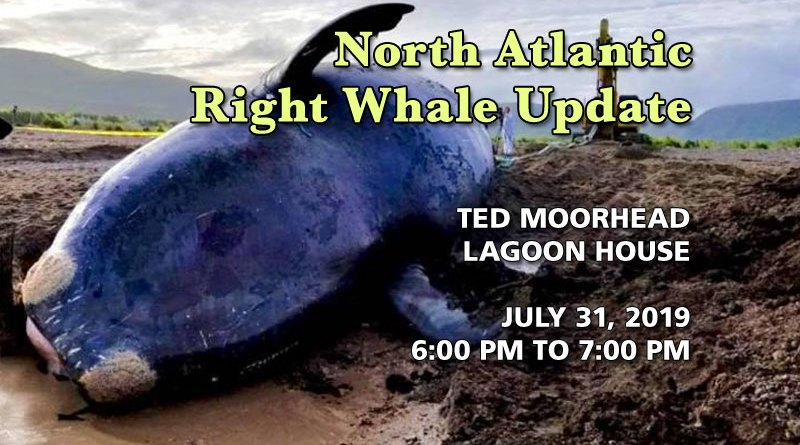 North Atlantic Right Whale Update on July 31