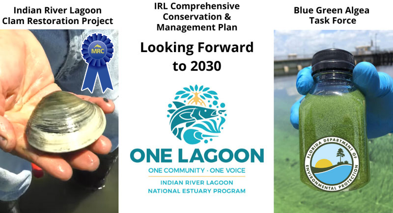 2020 MRC Indian River Lagoon Project of the Year Award Nominations