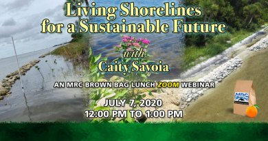 "July 7 Virtual Brown Bag Seminar ""Living Shorelines for a Sustainable Future"