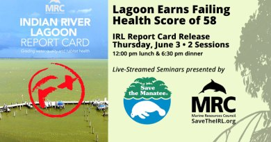 IRL Report Card Seminars