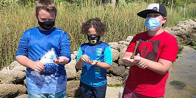 MRC Summer Camp Seining Critters
