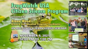 November Lunch & Learn: FrogWatch USA
