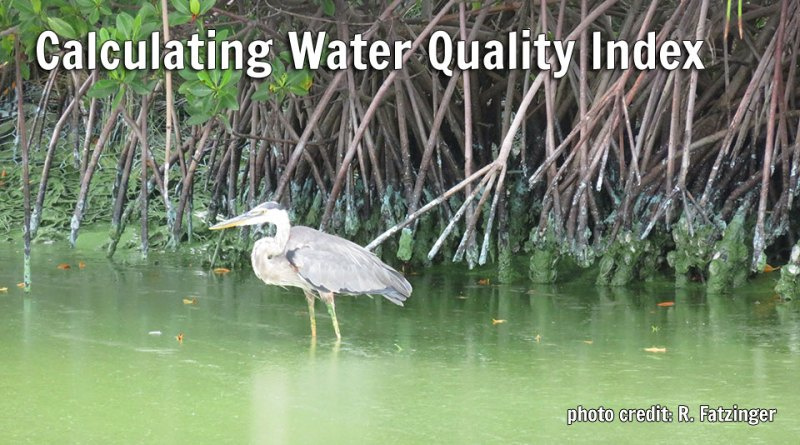 Calculating Water Quality Index