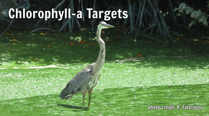 Chlorophyll-a Targets