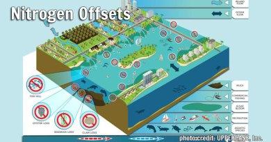 Nitrogen Offsets