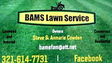 BAMS Lawn Care