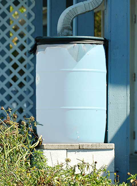 55 gallon primed rain barrel