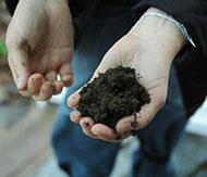 tips-test-your-soil