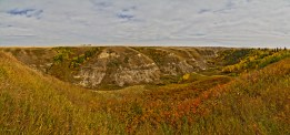 SpruceCoulee