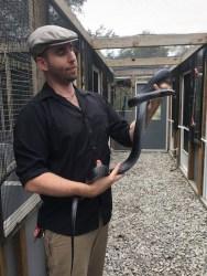 save-the-snakes-indigo-orianne-starkey