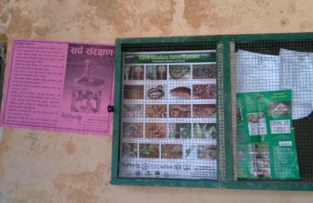 Brochures and Posters on the notice board of schools 2