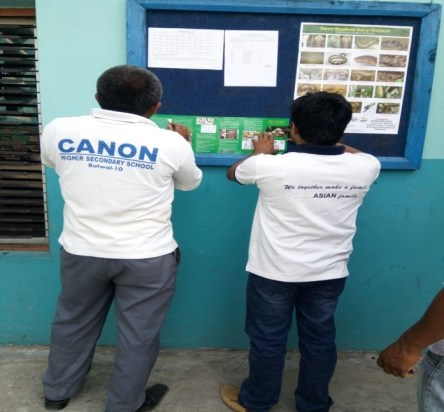 Schools staff hanging the Brochures and Posters on the notice board 2