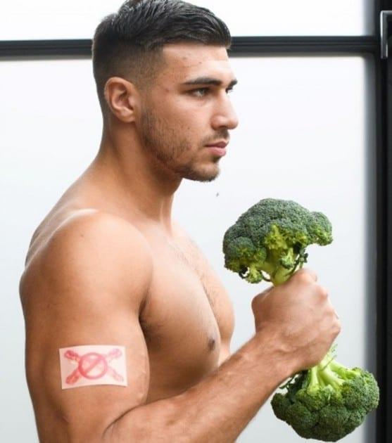 patch végétarien