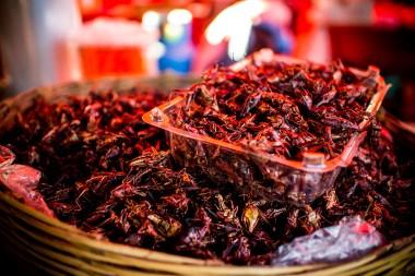 insetti fritti