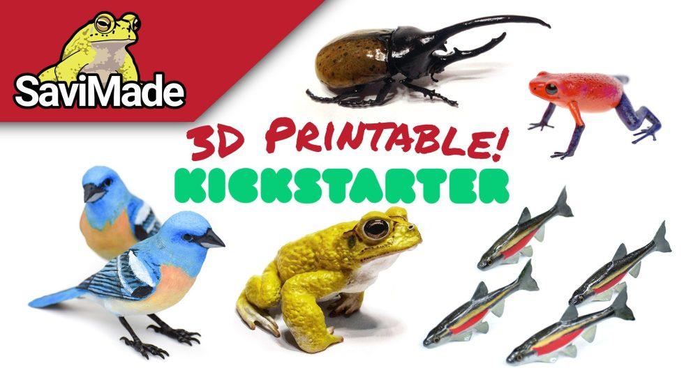 3D printable Kickstarter