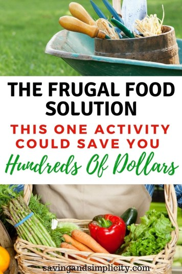 Learn the one activity that could save you hundreds of dollars if not more in grocery expenses. Learn the how to's for providing your family fresh produce and the places to source it out. Make a difference and save money.