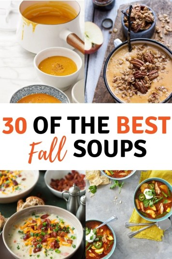 30 of the best Fall soups. There is something comforting about a delicious Autumn soup. Whether it be chicken noodle, pumpkin or broccoli and cheddar.