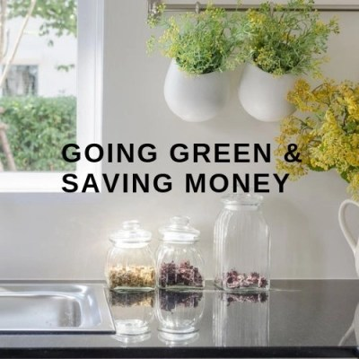 Going Green & Saving Money