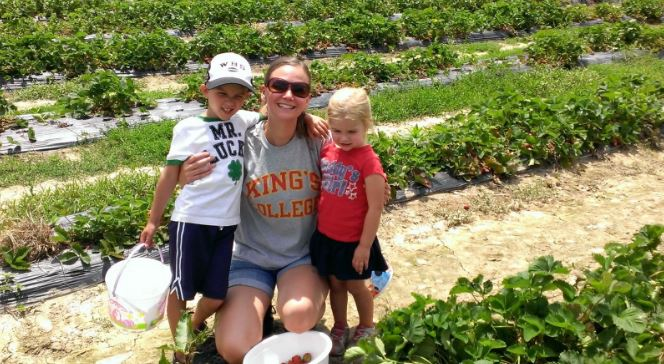 strawberries with kids