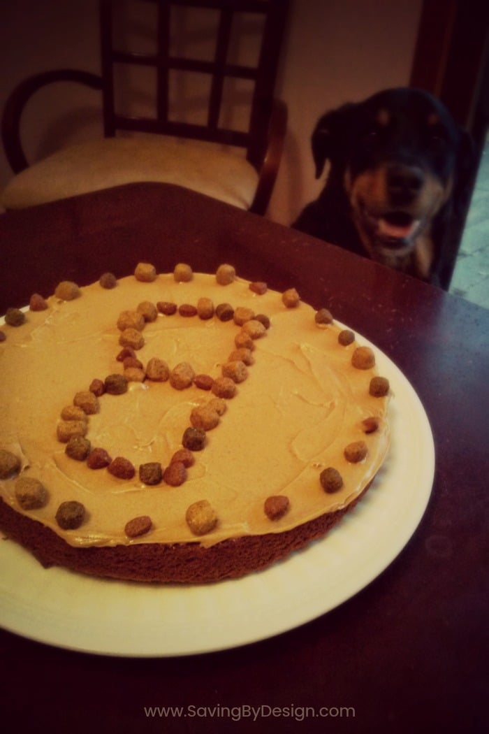 This easy dog birthday cake is the perfect homemade treat for your dog's birthday! It's made with peanut butter and carrots so your dog will love it!