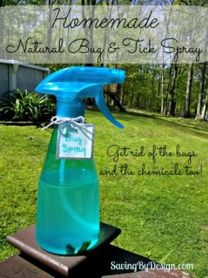 I try to use as few unnecessary chemicals as possible, so I came up with this wonderful homemade natural bug repellent. It works and smells great too!