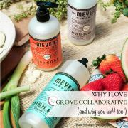 5 Reasons I Love Grove Collaborative (and Why You Will Too!)