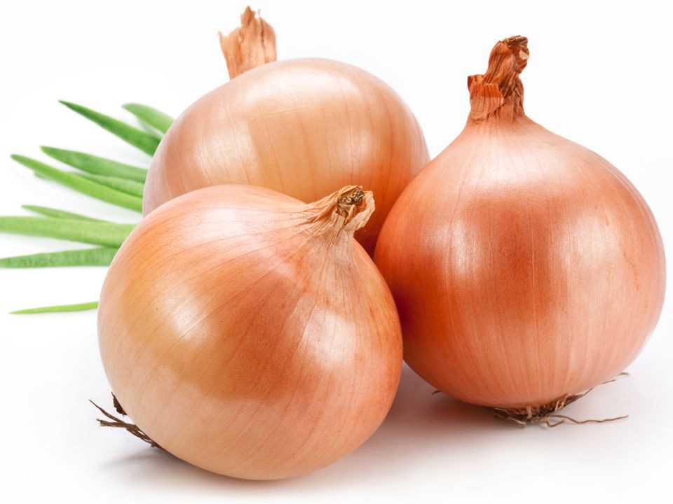 Save 20% on any single purchase of loose Onions