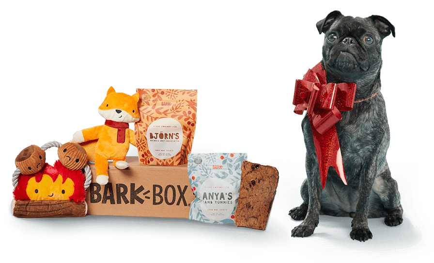 BarkBox ONLY $15 on Sale + Free Shipping in Time for Christmas