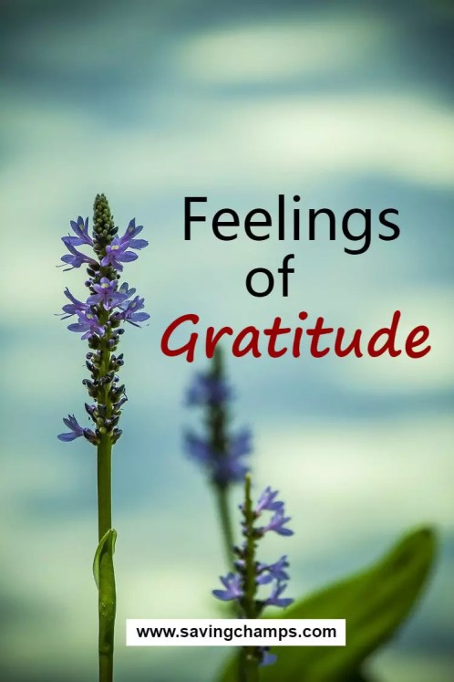 Feelings of gratitude