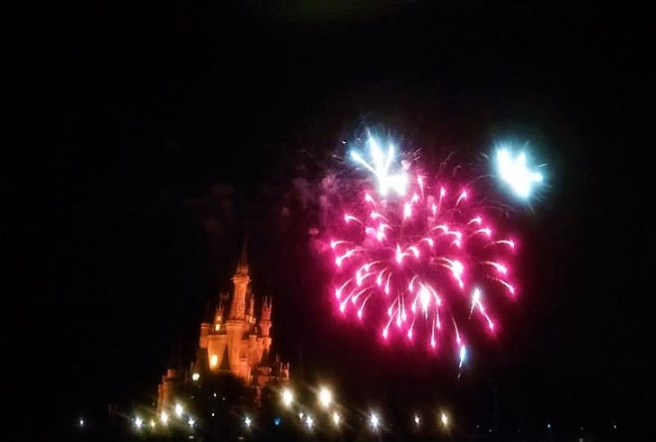 Disney world independence day live stream