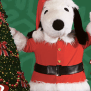 Free Admission To Knott S Berry Farm When You Donate To