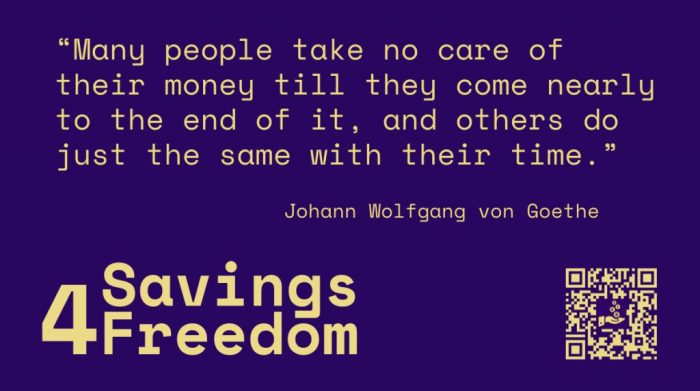 Savings4Freedom Quote Johann Wolfgang von Goethe