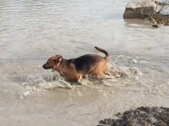 Splashin' around!
