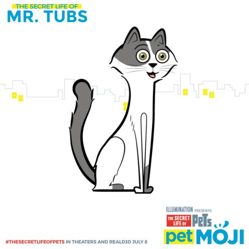 share-Mr. Tubs