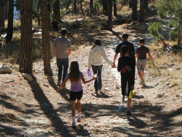 family hiking on mt. lemmon in tucson arizona