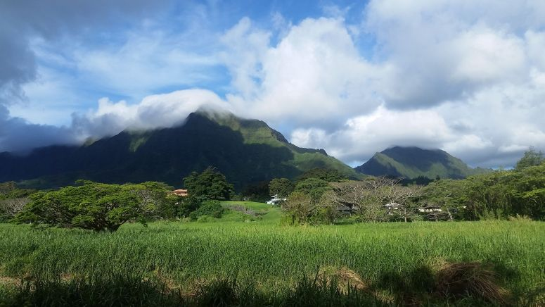 View of Ko'olau Mountains from Olomana Trail
