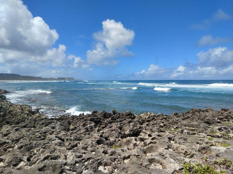 View of North Shore waves from Kahuku Point