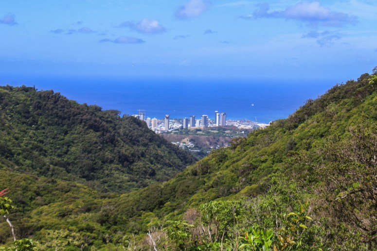 View of Honolulu from Nu'uanu Judd Trail