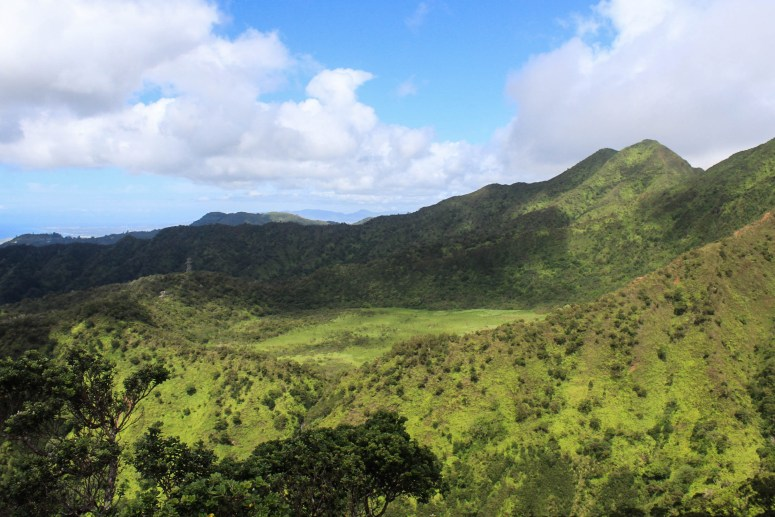 View of Ka'au Crater from Lanipo Trail