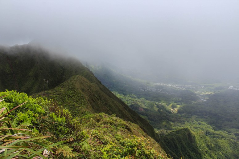 cloud covered ko'olaus hiking wiliwilinui ridge trail oahu hawaii