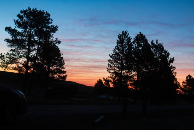 A colorful sunrise with clouds with pine trees in the foreground.