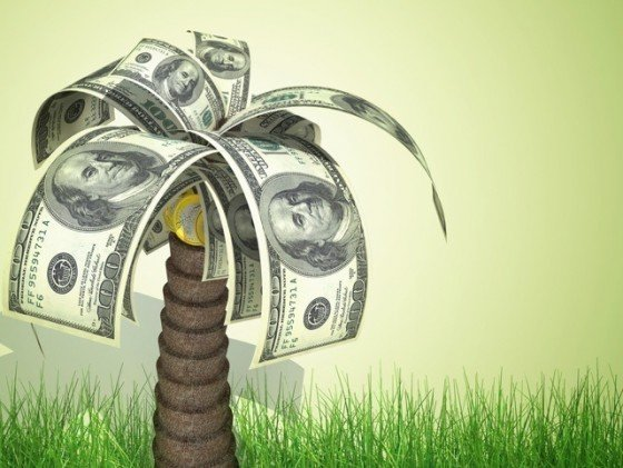 Does Money Grow On Palm Trees? Saving To Sail