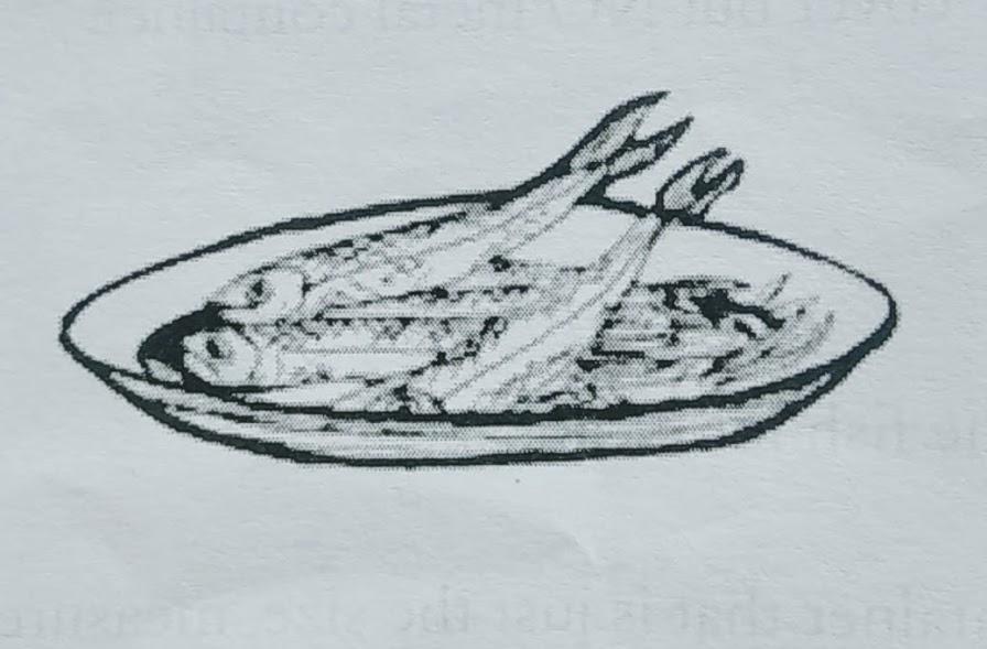 Soil Recipe-6: Gunapaselam, a plant tonic made with fish