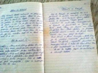 my mother's notebook
