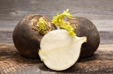 Ridichea neagra, medicament natural
