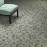 Sav On Floors Carpeting sales installation Manassas VA ...