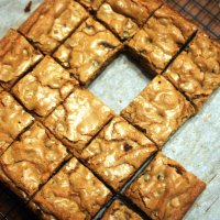 Brown Butter Blondies with Dried Blueberries, Walnuts and Chocolate