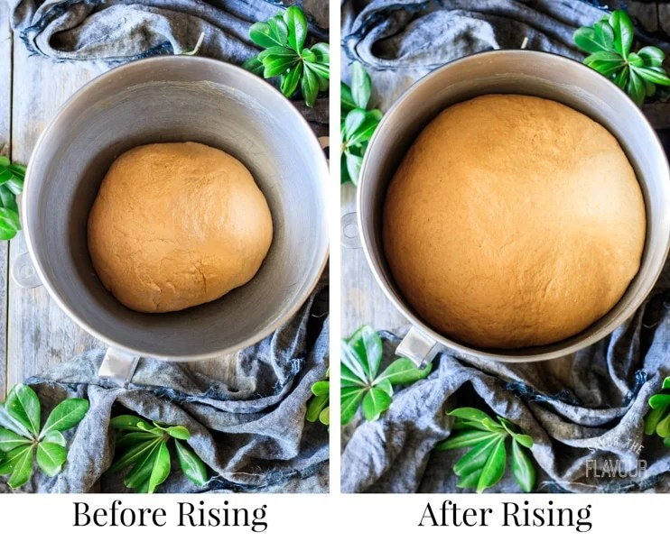 before and after letting the whole wheat molasses bread dough rise