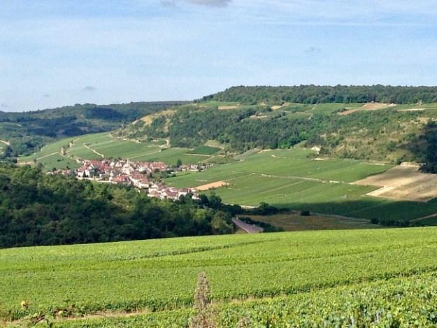 Climats of Saint-Aubin