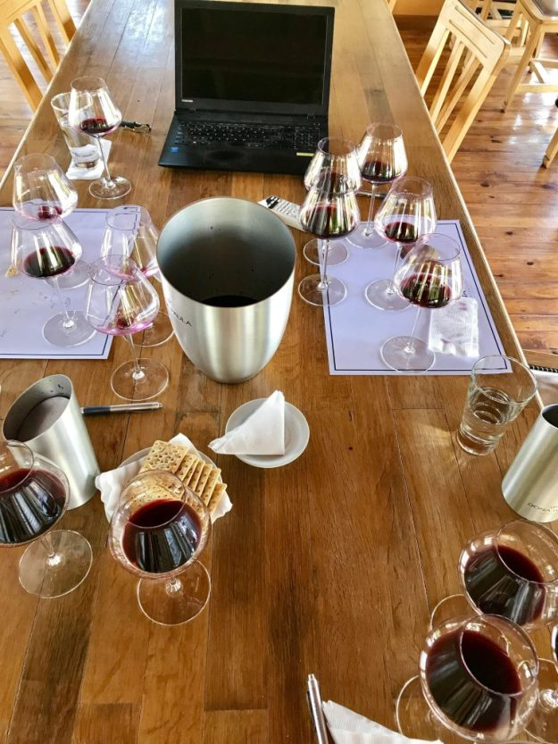 Tasting at Doña Paula Winery Mendoza